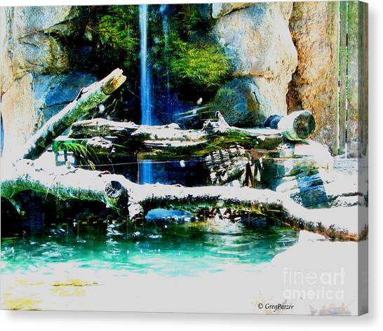 Indoor Nature Canvas Print by Greg Patzer