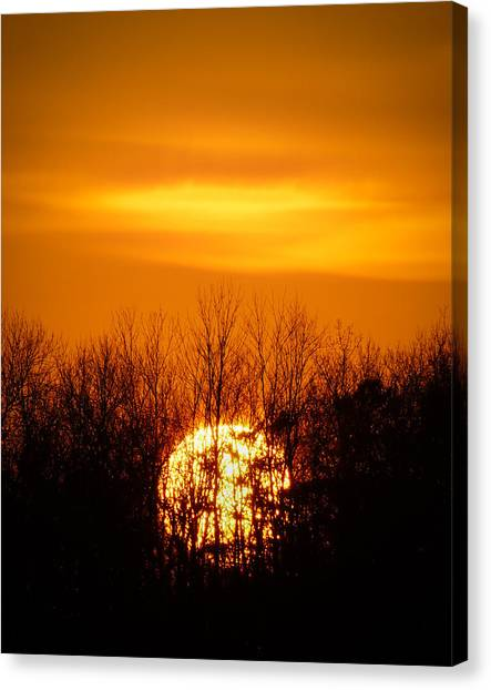 Inferno In The Trees Canvas Print