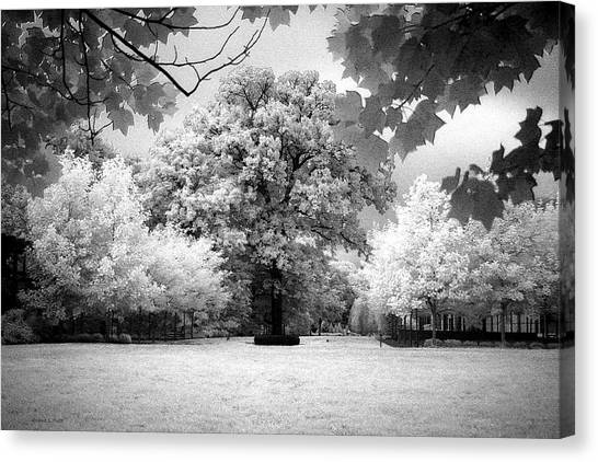 Infrared Majesty Canvas Print