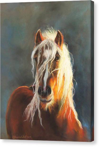 Ingalyl Canvas Print