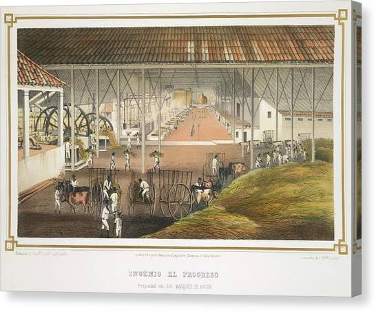 Principals Canvas Print - Ingenio El Progreso by British Library