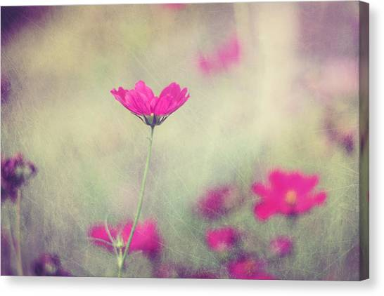 Flower Canvas Print - Ingrid's Garden by Amy Tyler