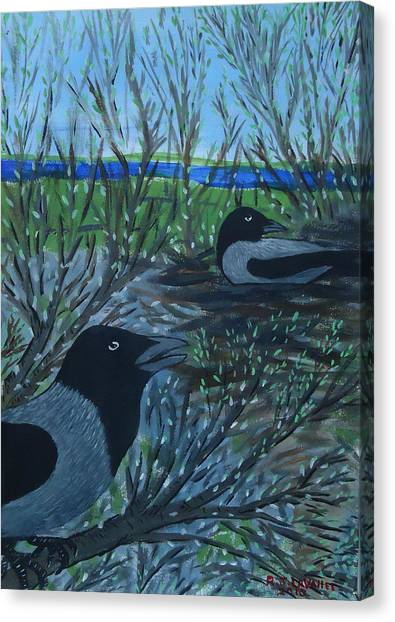 Inis Meain 5 Hooded Crows Canvas Print by Roland LaVallee