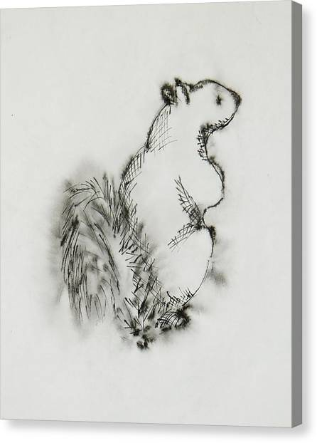 Ink Squirrel Canvas Print