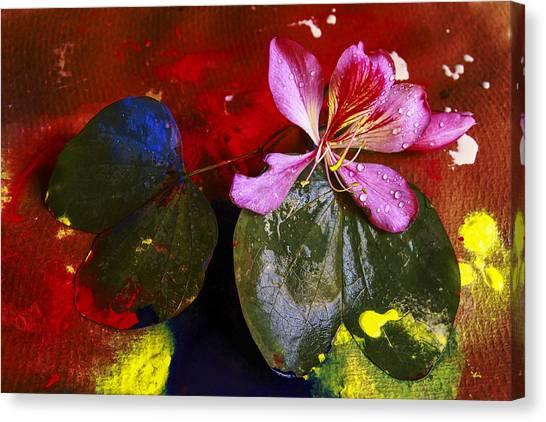 Inner Joy Canvas Print