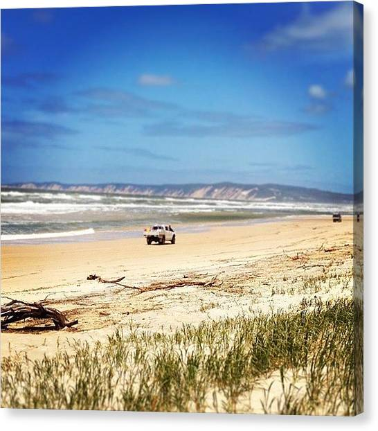 Offroading Canvas Print - #inskip #inskippoint #cooloola by Tony Keim