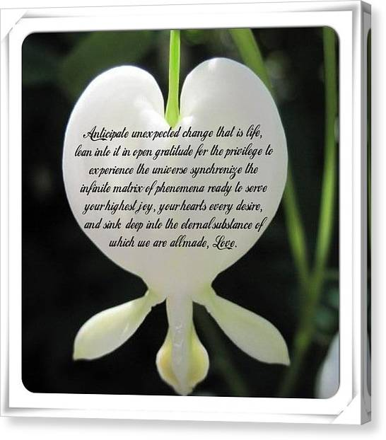 Inspirational Quotes Canvas Print