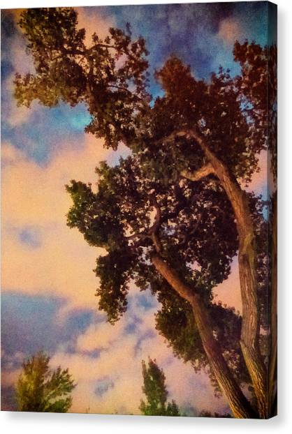 Inspired By Maxfield Parrish Canvas Print
