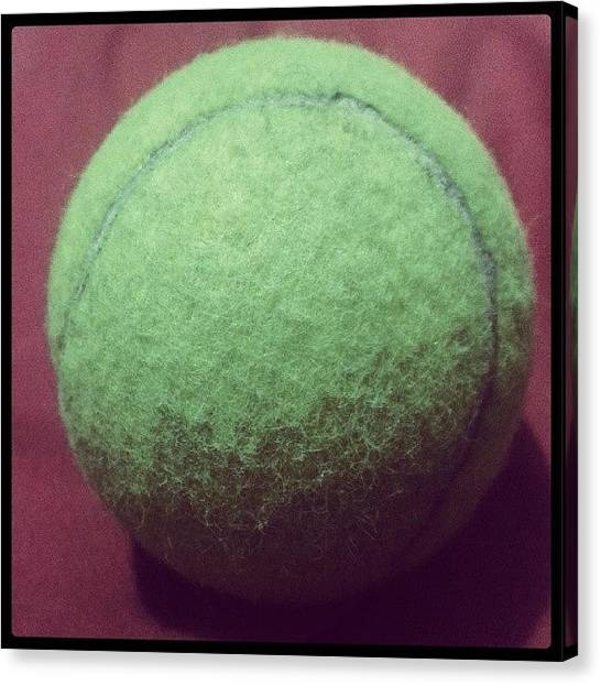 Tennis Ball Canvas Print - #instagramers #instagram #igers by Jerry Tamez