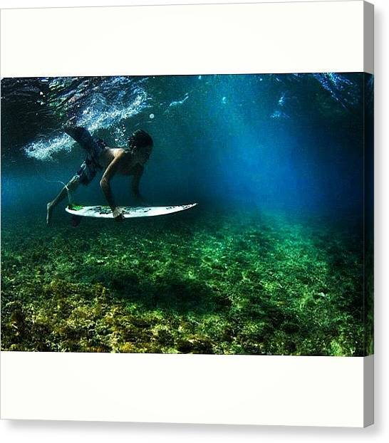 Penguins Canvas Print - @insta_paull Duckdiving In The Crystal by Max Korn