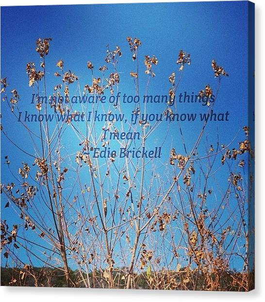 Instaquote#instaquoteapp Canvas Print by Gia Marie Houck