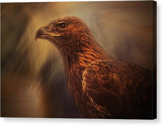 Eagles Canvas Print - Instincts Cage by Desislava Ignatova