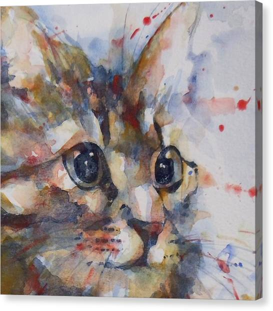 Kittens Canvas Print - Intent by Paul Lovering