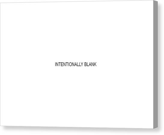 Intentionally Blank Canvas Print
