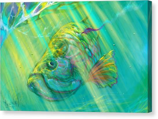 Fish Tanks Canvas Print - Interesting  by Yusniel Santos