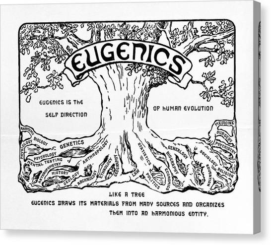 Controversial Canvas Print - International Eugenics Logo by American Philosophical Society