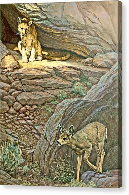 Mountain Lion Canvas Print - Interruption-cougar And Fawn by Paul Krapf