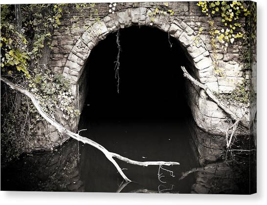 Into The Black Canvas Print