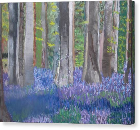 Into The Bluebell Wood Canvas Print