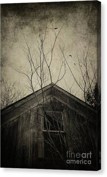 Into The Dark Past Canvas Print