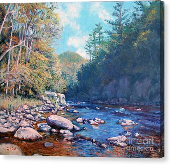 Into The Gorge Canvas Print by Gerard Natale
