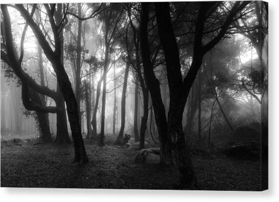 Mystic Setting Canvas Print - Into The Mystic by Marco Oliveira