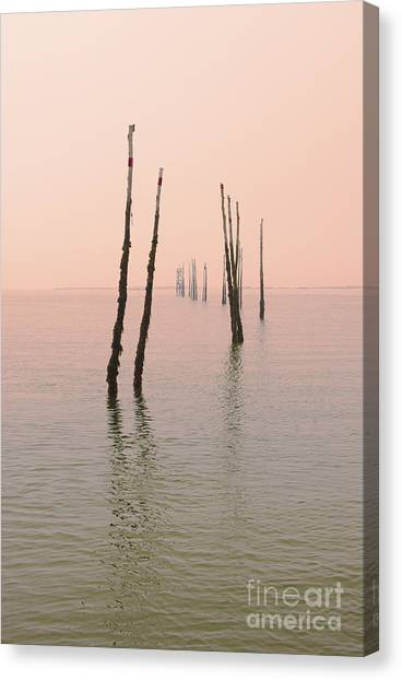 Into The Pink Sunset... Canvas Print