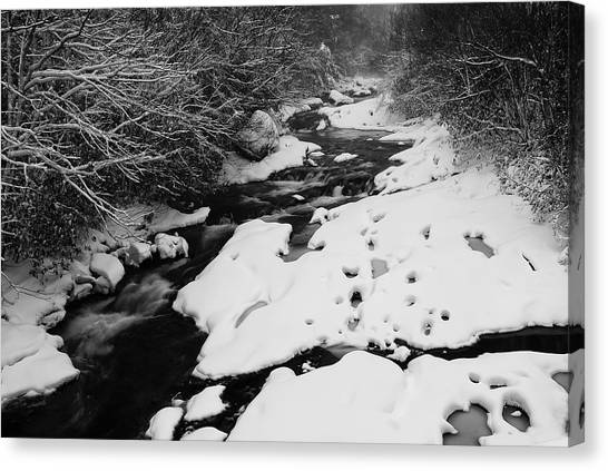 Into The Snowy Wilderness Canvas Print