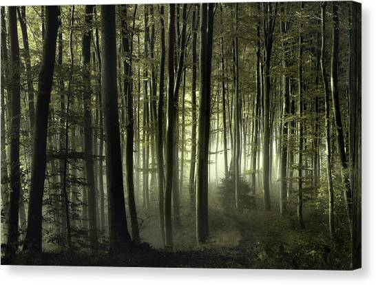 Atmosphere Canvas Print - Into The Unknown by Norbert Maier