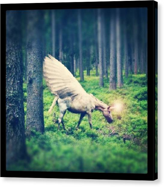 Fantasy Canvas Print - Into The Wood by Emanuela Carratoni