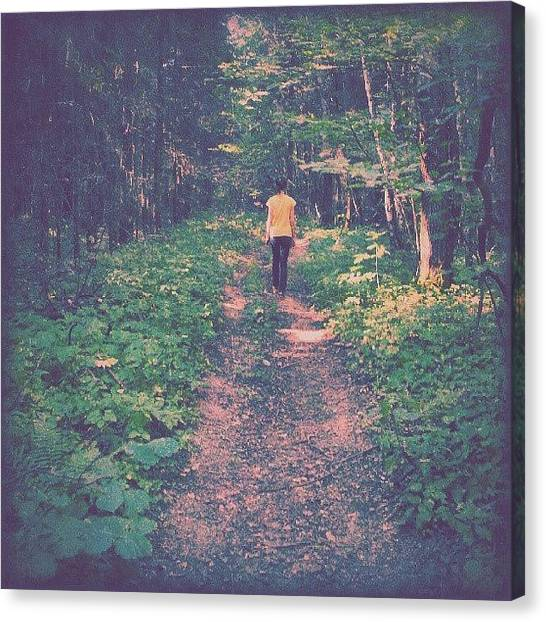 Forest Paths Canvas Print - Into The #woods. .. #latergram #russia by Alexandra Cook