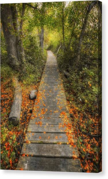 The Nature Center Canvas Print - Into The Woods - Retzer Nature Center - Waukesha Wisconsin by Jennifer Rondinelli Reilly - Fine Art Photography