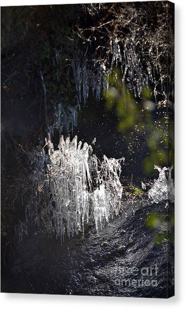 Intriguing Icicles In Yosemite Canvas Print