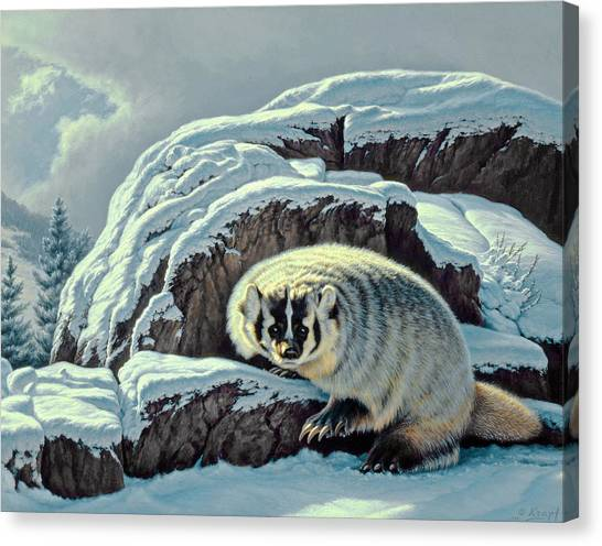 Yellowstone Canvas Print - Intrusion -  Badger by Paul Krapf