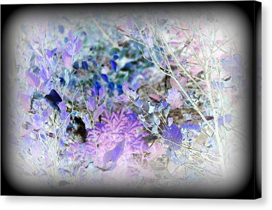 Inverted Bush Canvas Print