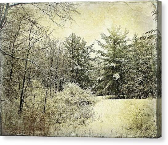Invitation To Winter  Canvas Print by Dianne  Lacourciere