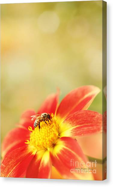 Inviting Canvas Print
