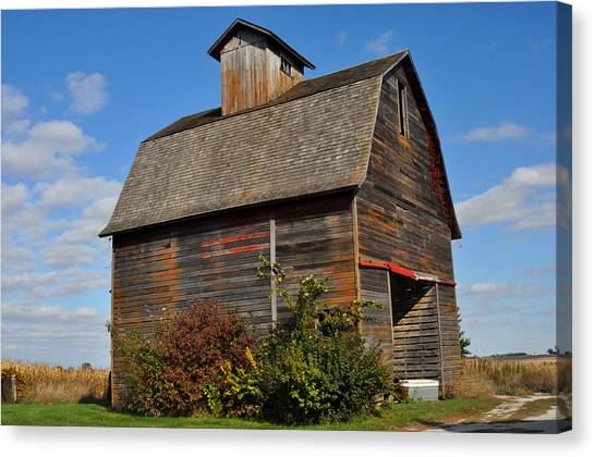 Iowa Barn Canvas Print by Diane Lent