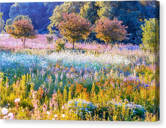 Iowa Summer Canvas Print