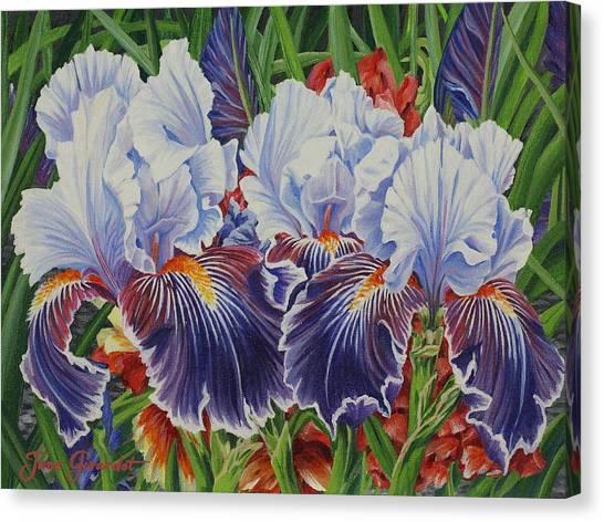 Iris Blooms Canvas Print