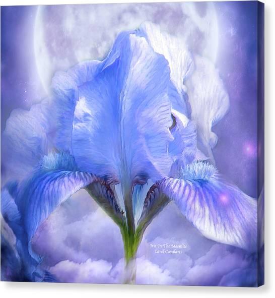 Iris - Goddess In The Moonlite Canvas Print
