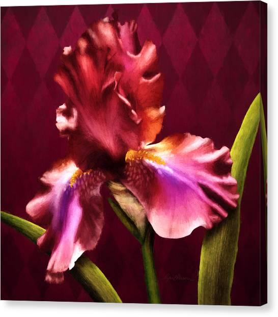 Iris I Canvas Print