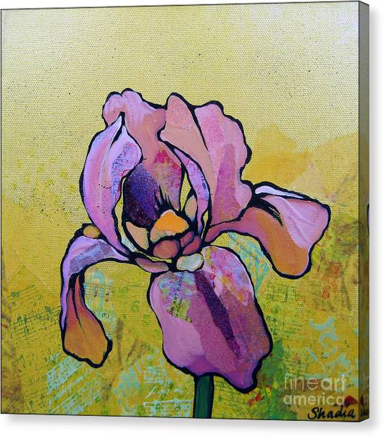 Irises Canvas Print - Iris I by Shadia Derbyshire