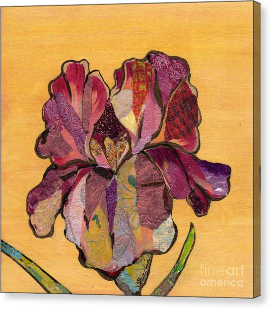 Irises Canvas Print - Iris Iv - Series II by Shadia Derbyshire