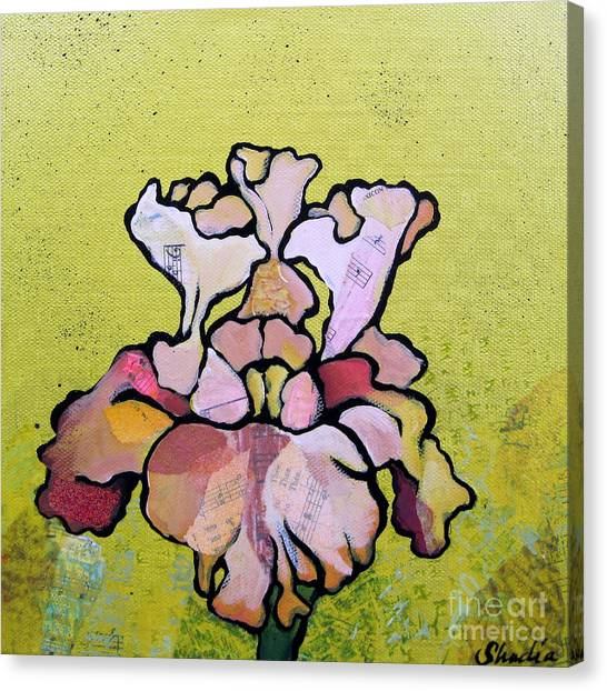Irises Canvas Print - Iris Iv by Shadia Derbyshire
