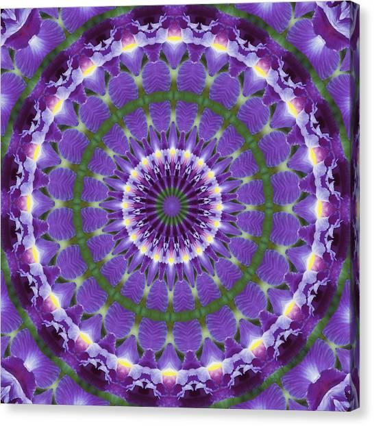 Iris Kaleidoscope  Canvas Print by Denise Beverly