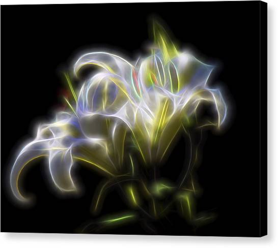Iris Of The Eye Canvas Print
