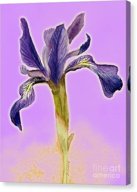 Iris On Lilac Canvas Print