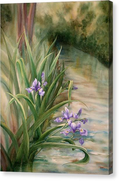 Iris Over The Inlet Canvas Print