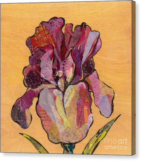Irises Canvas Print - Iris V  - Series V by Shadia Derbyshire